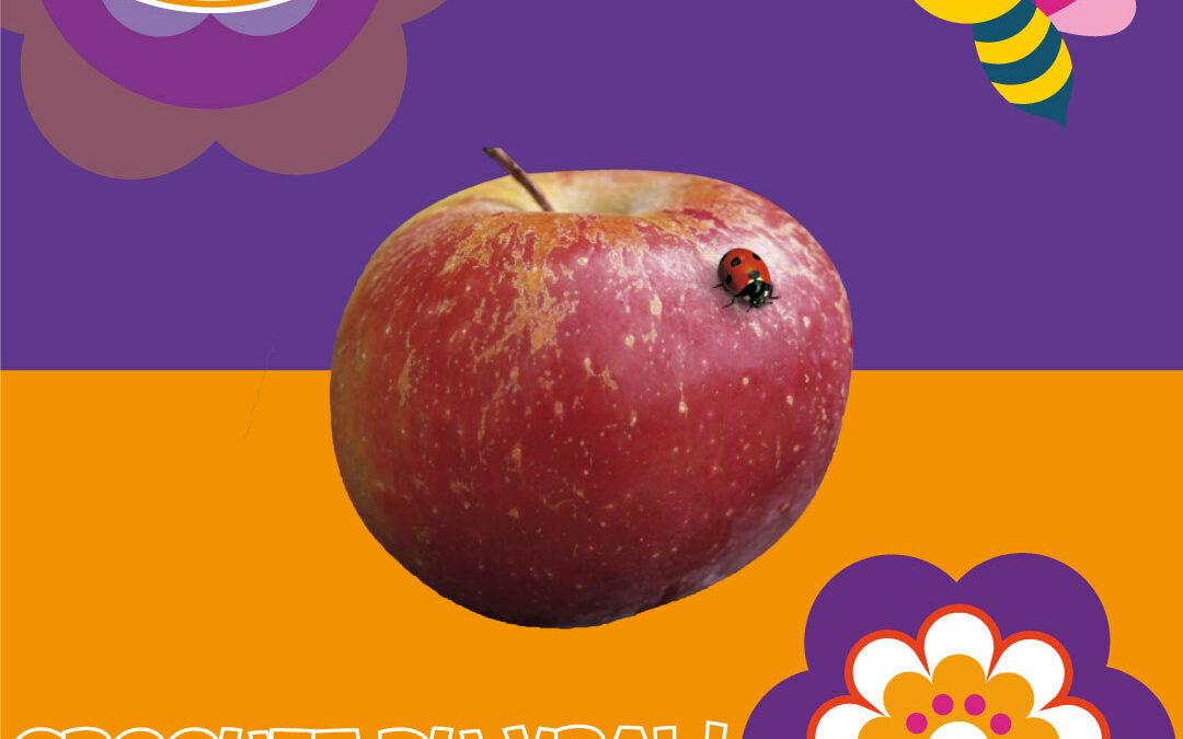 Choupette une pomme 100% française